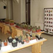 A jubileumi kiállítás egy részlete.