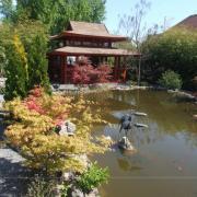 A japánkert tavaszi színekben.