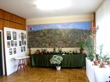 Társaságunk kiállítási részlete