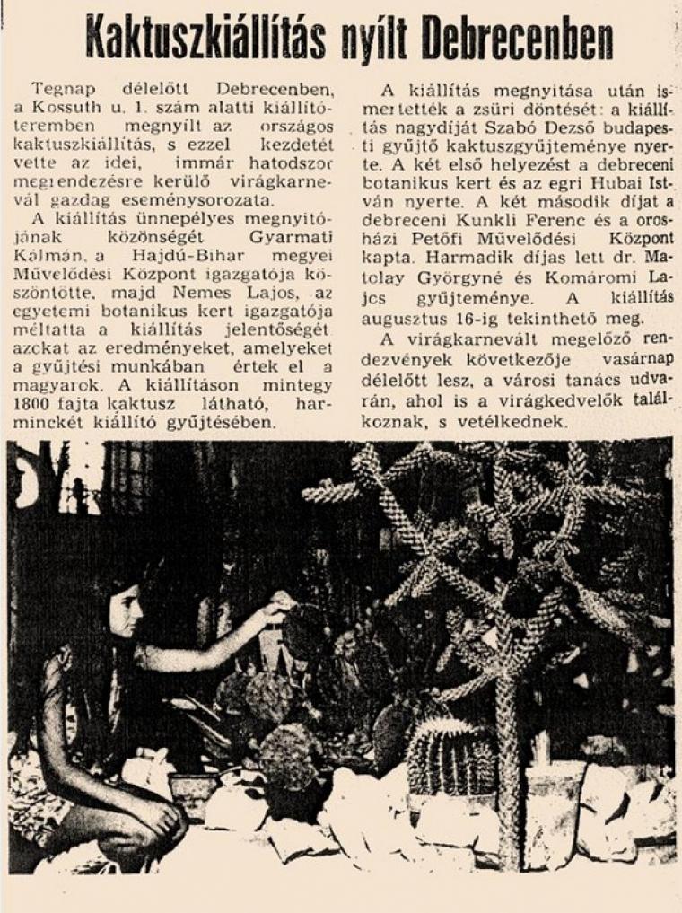 Kaktuszkiállítás nyílt Debrecenben