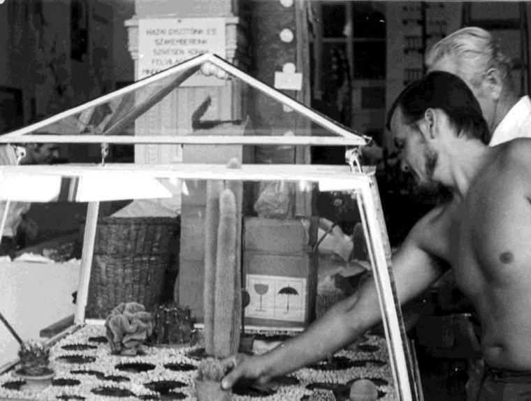 Az orosházi gyűjtők mobil bemutató növényháza, a személy ismeretlen. Debrecen,   1971. A mobil üvegházba még mesterséges világítást is beszerelt készítője. (fm)