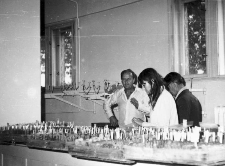 Fierer Kelemenék árukészlete. Debrecen, 1971.