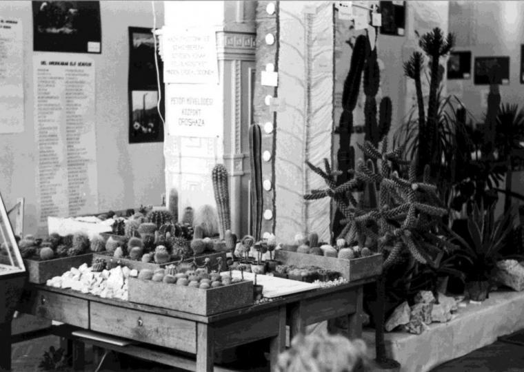 A háttérben lévő kiírás alapján a kiállítási részlet az orosházi Petőfi Művelődési Központ bemutatója. a felette lévő kiírás; Hazai gyűjtőink és szakembereink szívesen adnak felvilágosítást minden érdeklődőnek. (fm)