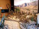 Az élőhelyi képek tárlata és az ízlésesen megépített sziklakertek.